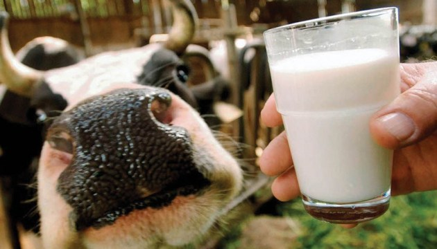 Exports of dairy products in April fell by 4.5%