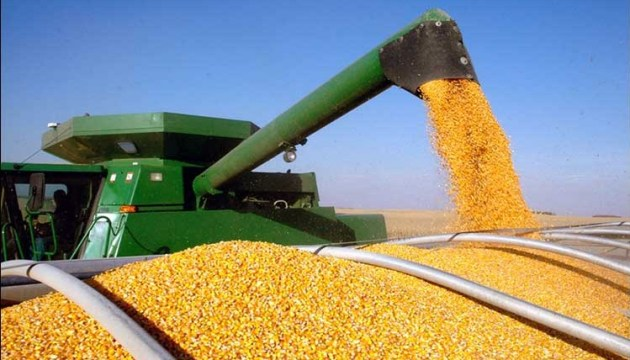 Exports of Ukrainian agricultural products this year grew by 24%