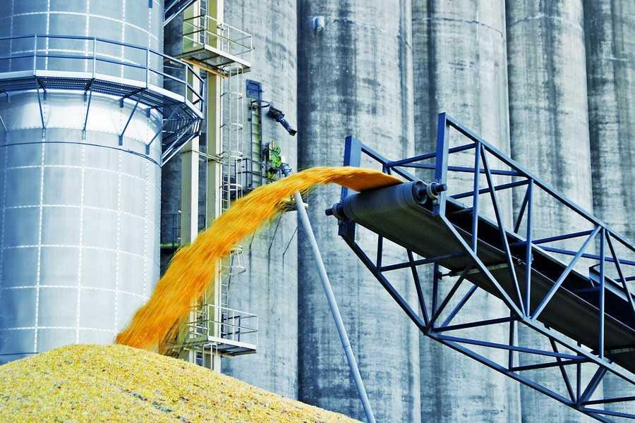 Ukraine exported more than 38 million tons of grain in the current marketing year