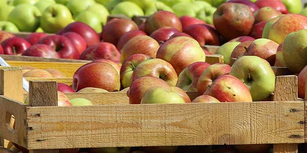 Ukraine last season increased apple exports 1.5 times