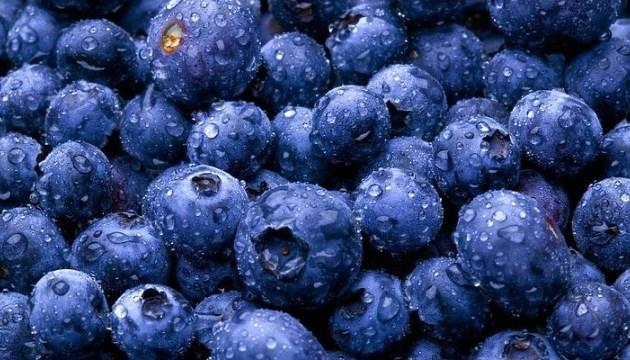 Ukraine in 2019 will double the export of blueberries