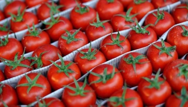 Ukraine entered the top three largest importers of Turkish tomatoes